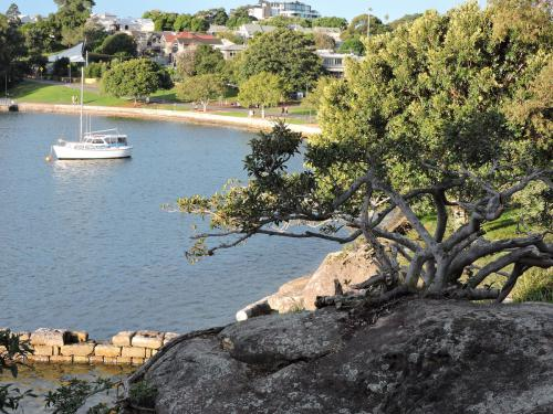 Iron Cove in front of King George's Park